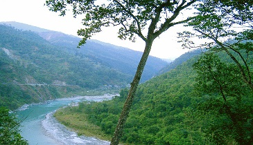 Teesta valley