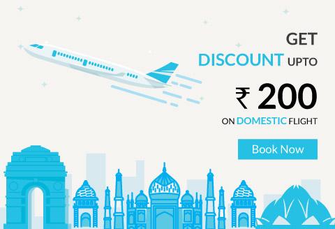 Domestic Flight Offer