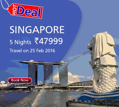 DP-Singapore-hot deal