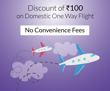 DOMESTIC ONE WAY FLIGHT OFFERS